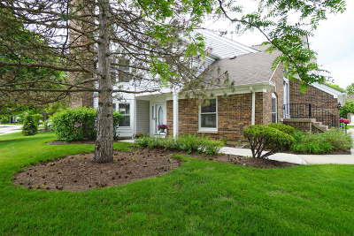 Buffalo Grove Condo/Townhouse For Sale: 224 Willow Parkway