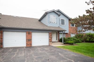 Schaumburg Condo/Townhouse For Sale: 1451 Fairlane Drive #4