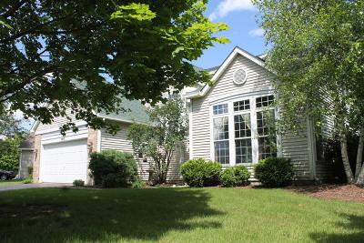 Elgin Single Family Home For Sale: 1455 Misthaven Lane