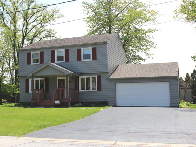 Tinley Park Single Family Home New: 6835 177th Street