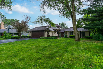 Hinsdale Single Family Home For Sale: 544 West 58th Place