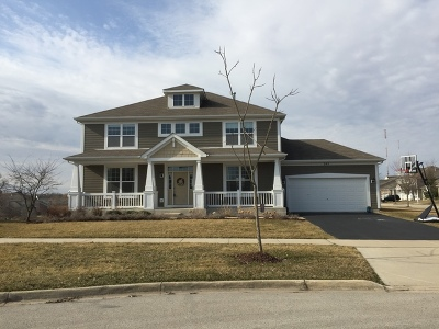 Elgin Single Family Home For Sale: 265 Tumbleweed Way
