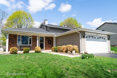 Hoffman Estates Single Family Home For Sale: 3740 Winding Trail Lane