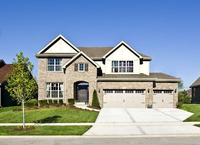 Orland Park Single Family Home New: 10001 El Cameno Re'al Drive