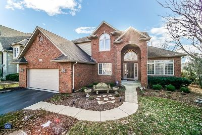 Naperville Single Family Home New: 3444 Lapp Lane