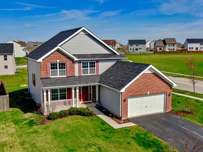 Joliet Single Family Home New: 1717 Seward Road