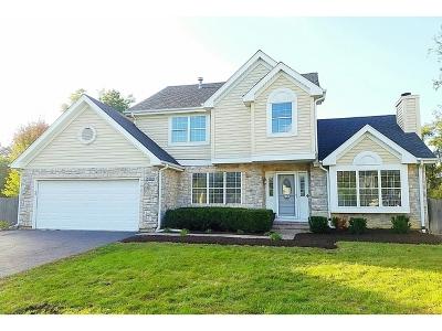 Barrington Single Family Home For Sale: 568 Braemar Lane