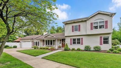 Elmhurst Single Family Home New: 385 West 2nd Street