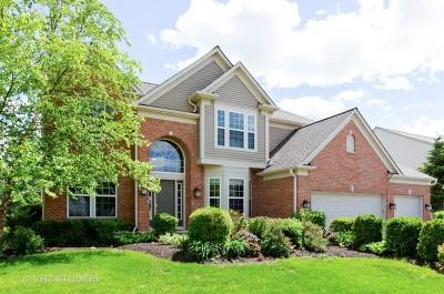 Carpentersville Single Family Home For Sale: 4069 Stratford Lane