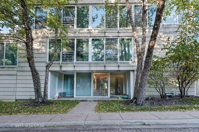 Evanston Condo/Townhouse New: 2532 Wellington Court