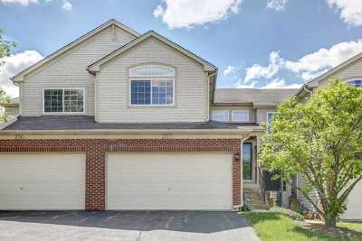 South Elgin Condo/Townhouse New: 230 Courtland Drive #B