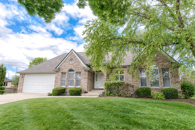 Naperville Single Family Home Contingent: 1779 Frost Lane