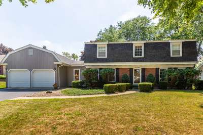 Downers Grove Single Family Home For Sale: 919 Stratford Lane