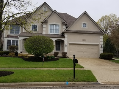 South Elgin Single Family Home New: 633 Waterside Drive