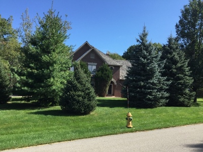 Libertyville Single Family Home For Sale: 5562 Hilltop Lane