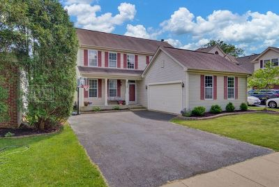 Geneva Single Family Home New: 3130 Larrabee Drive
