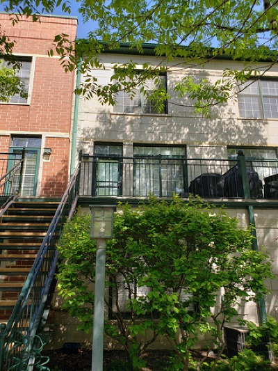 Chicago Condo/Townhouse New: 1813 South Clark Street #33