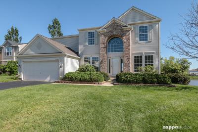 Plainfield Single Family Home New: 25024 Wright Lane
