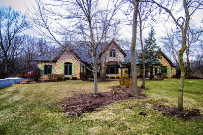 Homer Glen Single Family Home For Sale: 17350 South Parker Road