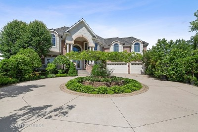 Vernon Hills Single Family Home For Sale: 151 Palmer Circle
