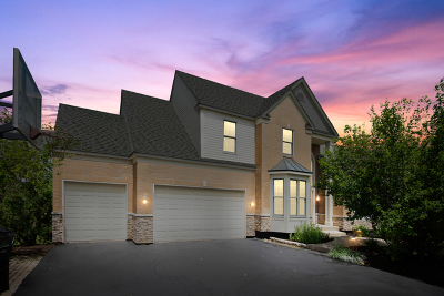 Spring Grove Single Family Home For Sale: 7309 Hillside Drive