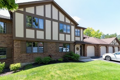 Palos Heights Condo/Townhouse For Sale: 7851 West Golf Drive #2B
