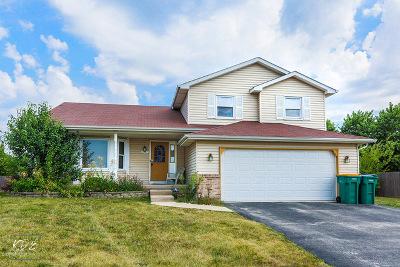 Joliet Single Family Home New: 6907 Riley Drive