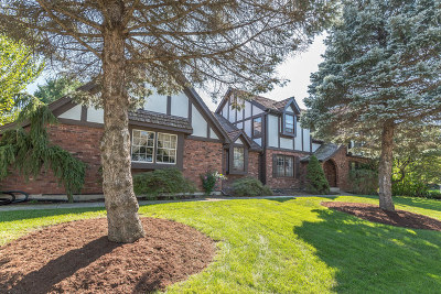 Wheaton Single Family Home For Sale: 190 Palamino Place
