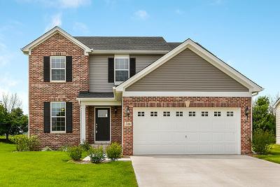 Minooka Single Family Home New: 516 High Grove Drive