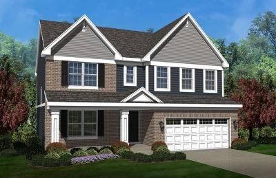 Plainfield Single Family Home New: 25442 West Ryan Lane