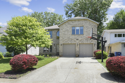 Highland Park Single Family Home For Sale: 1963 McCraren Road