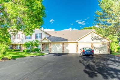 Vernon Hills Condo/Townhouse For Sale: 1233 Streamwood Lane
