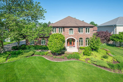 Orland Park Single Family Home New: 14350 Wooded Path Lane