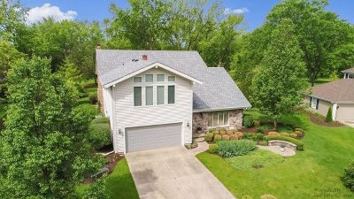Crystal Lake Single Family Home For Sale: 684 Greenbrier Lane