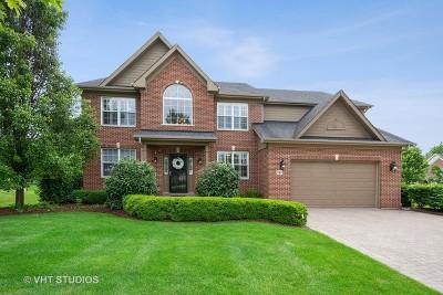 Palatine Single Family Home For Sale: 187 South Harrison Avenue