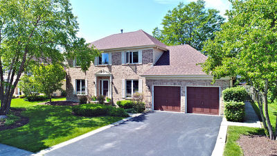 Mundelein Single Family Home For Sale: 378 Waverly Drive