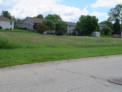 Mc Henry County Residential Lots & Land For Sale: 499 Kennedy Street