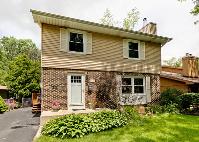 Libertyville Single Family Home For Sale: 310 Merrill Court