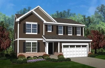 Plainfield Single Family Home For Sale: 25450 West Ryan Lane