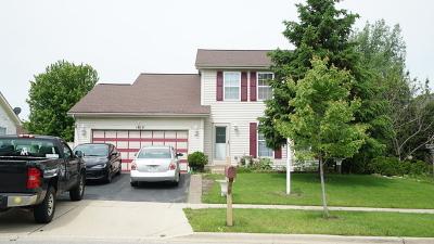 Carpentersville Single Family Home New: 1815 Cambridge Drive