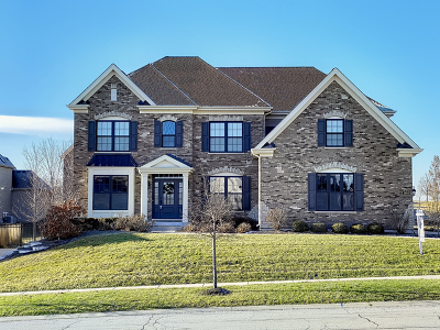 Elgin Single Family Home New: 3683 Heathmoor Drive