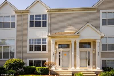 Joliet Condo/Townhouse New: 533 Silver Leaf Drive