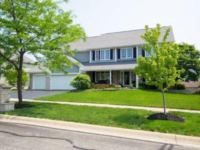 Carol Stream Single Family Home New: 1225 McCormick Street