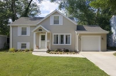 Glen Ellyn Single Family Home New: 368 Marion Avenue