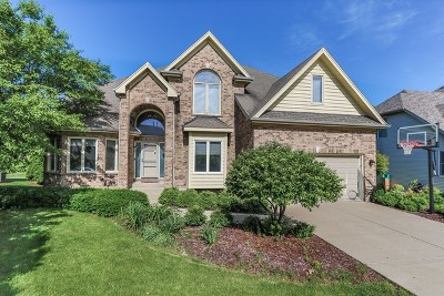 South Elgin Single Family Home New: 710 Chasewood Drive