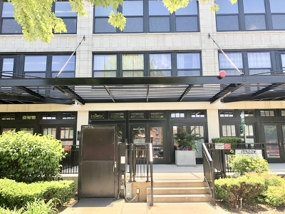 Chicago Condo/Townhouse New: 1033 West 14th Place #339