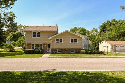 Lisle Single Family Home For Sale: 4400 Buckley Road