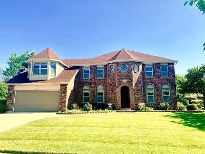 Naperville Single Family Home New: 693 Chippewa Drive