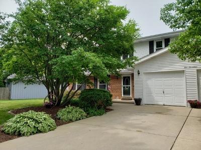 Joliet Single Family Home New: 417 Apollo Drive