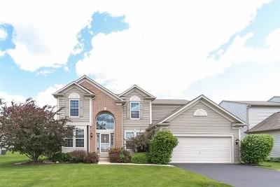 Carpentersville Single Family Home New: 3122 Deerpath Lane
